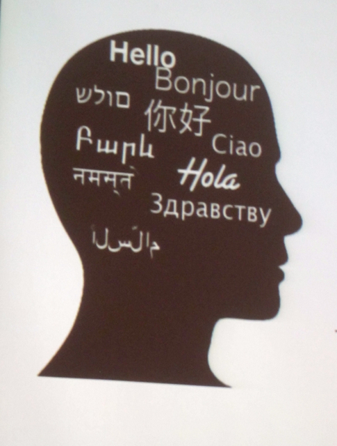 Flerspråklighet